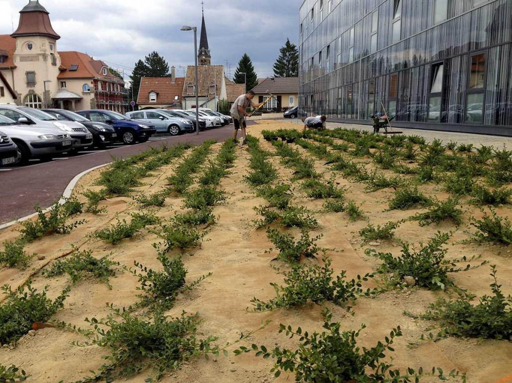 H pital de pfastatt olgreen paysagiste mulhouse 68 for Espace vert mulhouse